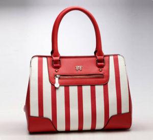Ladies Handbag 3 pictures & photos