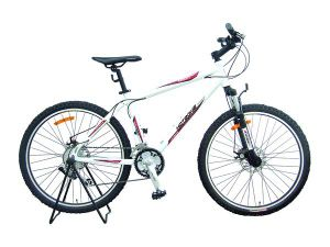 Export Mountain Bicycle (FP-MTB-A041) pictures & photos