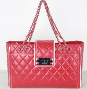 2009 Newest Fashion Bag (BB013)