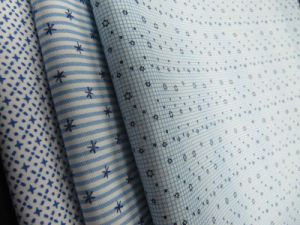 Cotton Woven Printed Fabric for Shirt pictures & photos