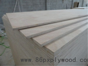 13 -Ply Eucalyptus Plywood