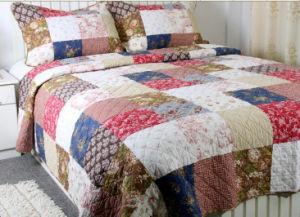 100% Cotton Bedding Set (HK-1981) pictures & photos