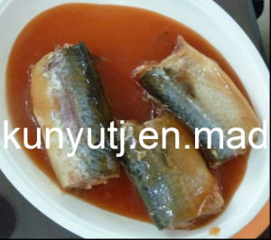 Canned Sardines in Tomato Sauce pictures & photos