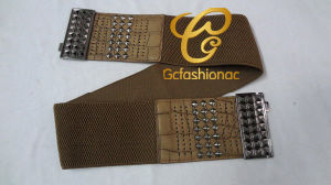 Elastic Belts for Women ′s Garments-Gc201258