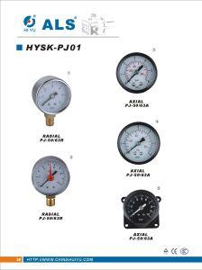 Pressure Gauge (HYSK-PJ01)