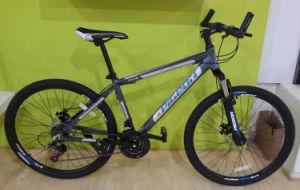 Tx7.0 Economic Aluminum Alloy Mountain Bike (FP-MTB-A069) pictures & photos