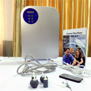 Popular portable Cheap High Quality Ozone Machine pictures & photos