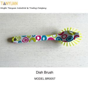 Kitchen Brus/ Dish Brush/Cleaning Brush/Hand Brush