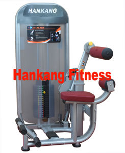 commercial fitness, Lat Pulldown + Seated Row (HN-2003) pictures & photos
