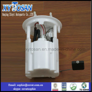 Fuel System Pump for Peugeot 307/406 Lada OEM2123 1139009 20/160 Fuel Pump Assembly pictures & photos