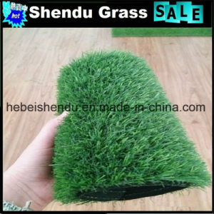 Artificial Grass 20mm with 140stitch/M 8800dtex Yarn pictures & photos