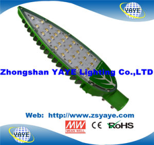 Yaye 18 Lowest Price High Quality COB 30W LED Streetlight / COB 30W LED Road Lamp with 3/5 Years Warranty pictures & photos