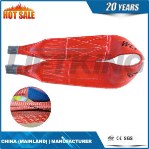 Polyester Flat Webbing Sling 10t pictures & photos