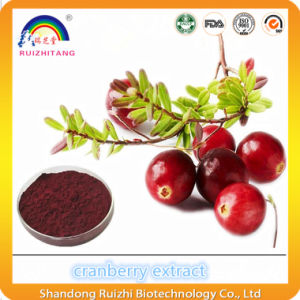 Plant Extract Cranberry Extract Powder pictures & photos