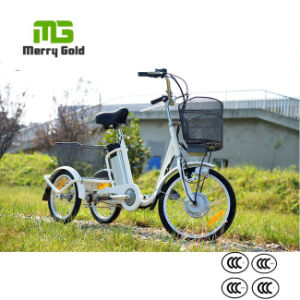 Buy 36V 250W Pedal Assist Electric Cargo Trike From China pictures & photos
