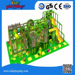 Multi Function Exercise Amusement Park Commercial Kids Indoor Playground Jungle Gym pictures & photos