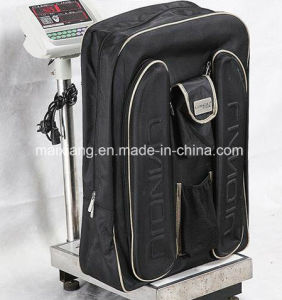 Inspection Service/Product Final Inspection/Quality Control for Bag pictures & photos