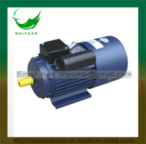 Hot Sale YC Series 1 Phase Motor for General Use pictures & photos