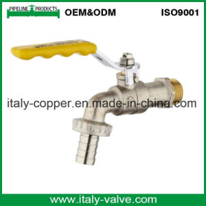 Quality Guarantee Brass Forged Bibcock (AV2002) pictures & photos