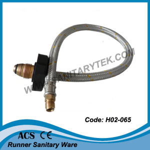 Flexible Stainless Steel Hose for Gas (H02-063) pictures & photos
