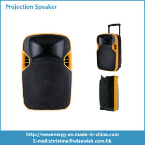 12 Inches PRO Audio MP3 Active Speaker with LED Projector pictures & photos