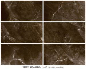 600X1200mm Soft Polished, Color and Full Body, Marble Tiles by Made in Foshan pictures & photos