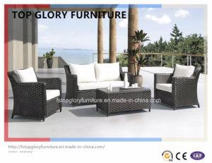 Plastic Garden Sofa, Leisure Sofa, Patio Sofa for Outdoor Sofa (TG-76) pictures & photos
