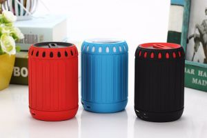 Best Tone Portable Wireless Bluetooth Speaker with FM Radio (DS-717)