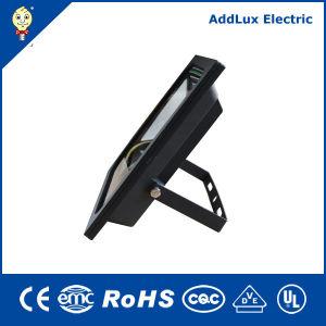 IP66 10W 20W 30W 50W 70W 100W LED Floodlight pictures & photos
