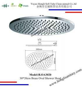30*20cm Oval Shape Brass Shower Head in Chrome Plated pictures & photos