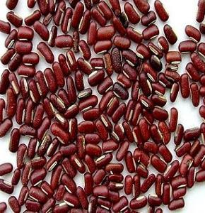 Red Vigna Bean/Vigna Umbellata /Red Vigna Bean Extract/ Red Bean Extract Powder/ High Quality/Diuretic/Lose Weight pictures & photos