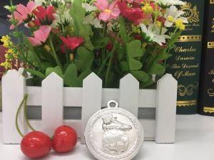 Customer Design Bronze Zinc Alloy Football Game Medal pictures & photos