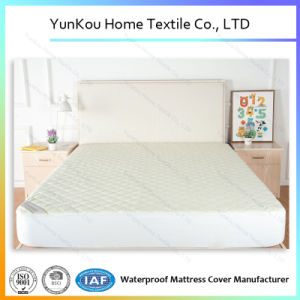 Soft Premium Terry Anti Bacteria Mattress Encasemnt pictures & photos