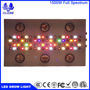 1500W LED Grow Light Full Spectrum for Indoor Plants Veg and Flower - Dual Growth/Bloom Switch Daisy Chain pictures & photos