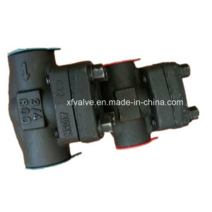 800lb/1500lb/2500lb Forged Steel A105 Thread End NPT Check Valve pictures & photos