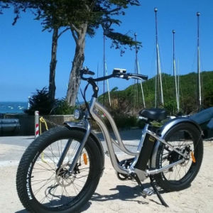 Hot Sale Electric Bike Step Through Style 48V 500W Powerful Motor with Wonderful Ride Feel pictures & photos