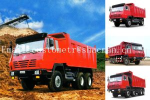 Shacman S2000 6X4 Dump Truck Wei Chai Engine 290HP pictures & photos