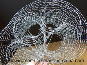 Sailin Hot-Dipped Chicken Wire Mesh Netting pictures & photos