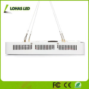 Full Spectrum 300W 600W 900W 1000W 1200W Panel LED Plant Grow Light for Bloom and Vegetable pictures & photos