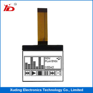 LCD Display Modules Cog LCD for Function Machine pictures & photos