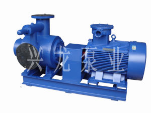 Twin Double Screw Pump pictures & photos