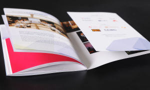 catalog Printing with Cover Folder pictures & photos
