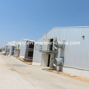 Full Set High Quality Poultry Shed and Poultry Farm Construction pictures & photos
