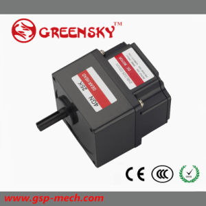 GS 12V/24V 80W 60mm Brushless DC Gear Motor with High Torque pictures & photos