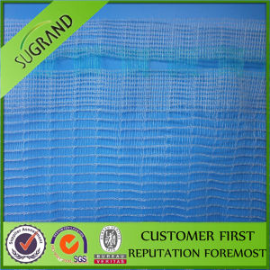 Agriculture Anti Hail Netting with HDPE Fabric Net pictures & photos