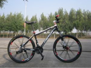 Factory Direct Export Good Quality MTB Adult Bicycle pictures & photos