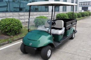 Electric Utitlity Car for 2 People with a Big Cargo Box EQ9042-C2 pictures & photos