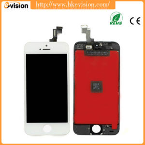 Factory Price Mobile Phone LCD for iPhone 5s LCD Digitizer Accept Paypal pictures & photos