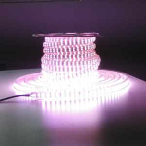 High Luminous Efficacy LED Light Strip with Ce RoHS Certification pictures & photos
