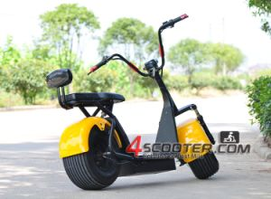 Efun Ecoreco EEC Harley 800W City Coco 2 Seats Es8004 pictures & photos